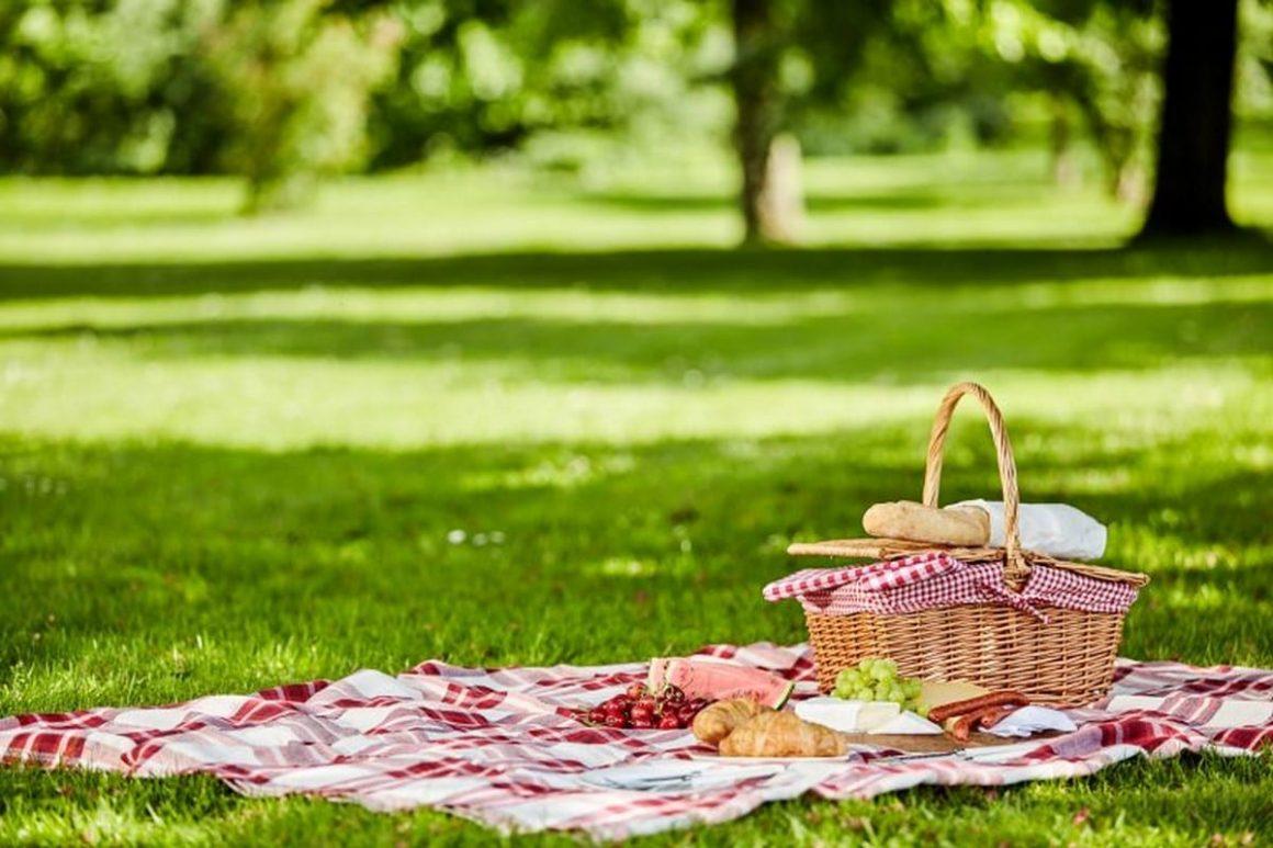Gita in città, turisti e guide con pranzo al sacco: come affrontare una giornata intensa fuori porta